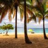 Top 5 Resorts in Punta Cana